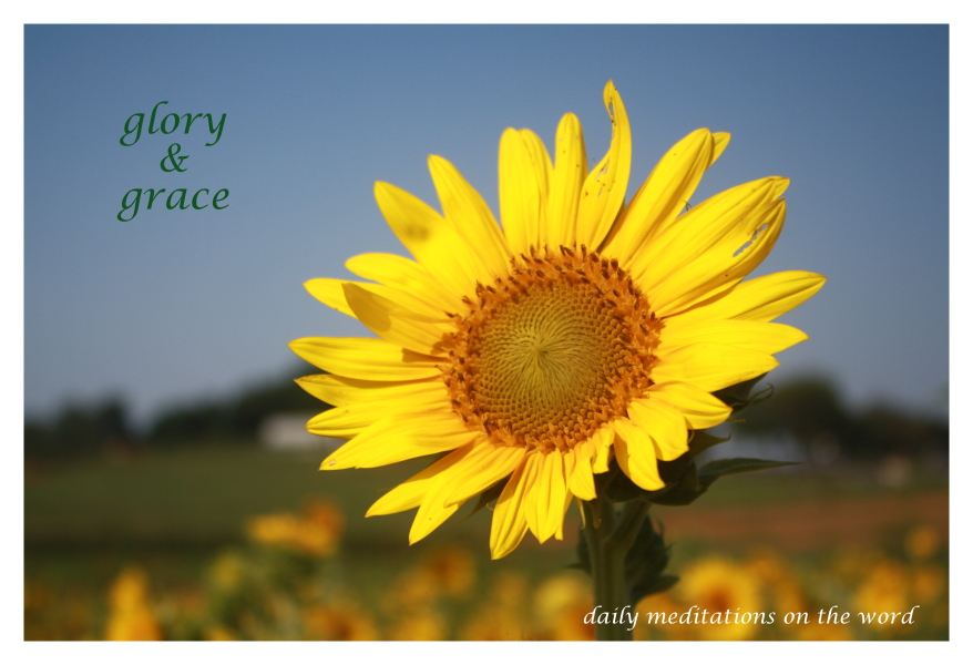 Glory and Grace Proverbs 4