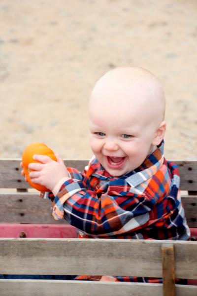 Anybody want a pumpkin?