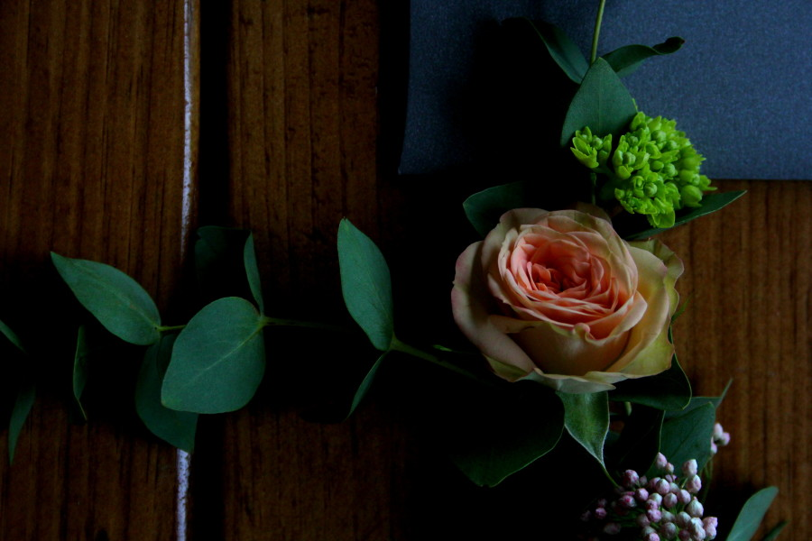 Holland Daze Flowers