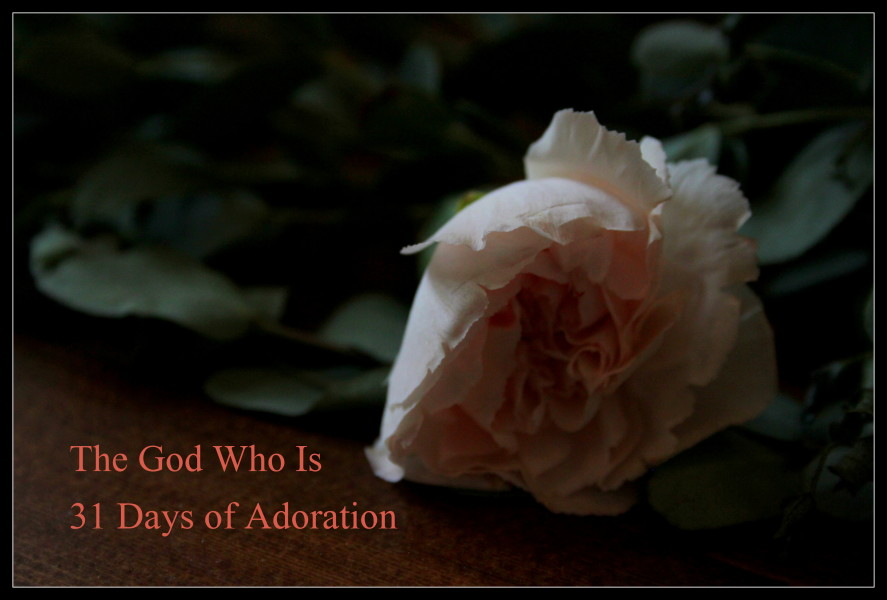 31 Days of Adoration