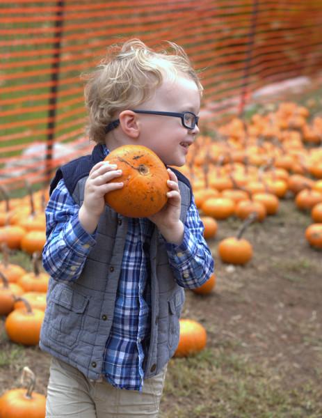 Pumpkin Holding
